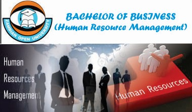 BACHELOR OF BUSINESS (Human Resource Management)
